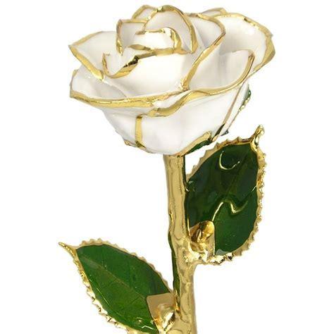 "24k Gold Trimmed Rose: 11"" White Rose: Love Is A Rose"