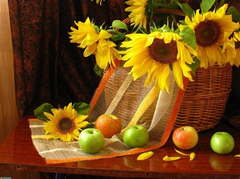flowers apples  life petals fruit sunflowers phone