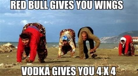 Memes Of 2014 - best vodka meme 2014