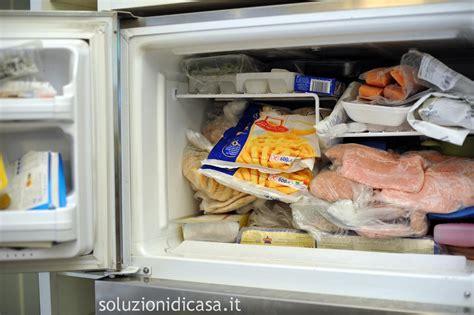congelamento alimenti quali alimenti possono essere congelati soluzioni di casa