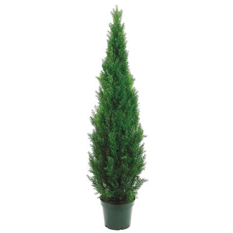 6 foot artificial outdoor cedar tree potted 6ftced