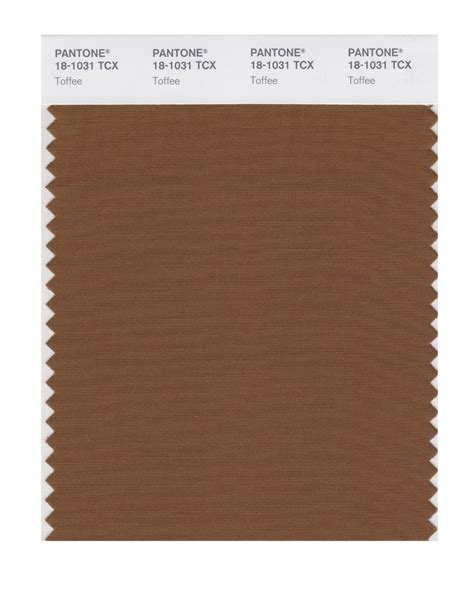 images of the color toffee buy pantone smart swatch 18 1031 toffee
