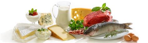 3 protein facts 39 interesting facts about protein factretriever