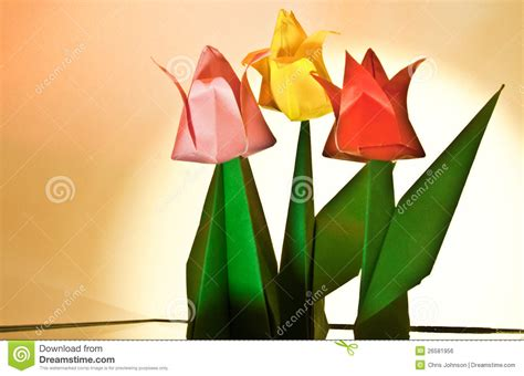 tulip flower craft royalty  stock image image