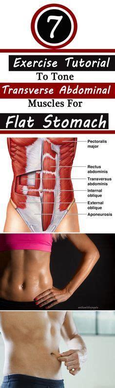 best 25 transverse abdominal exercises ideas on waist slimming exercises slim