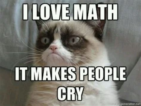 Meme Math - the guide to making your own cat meme