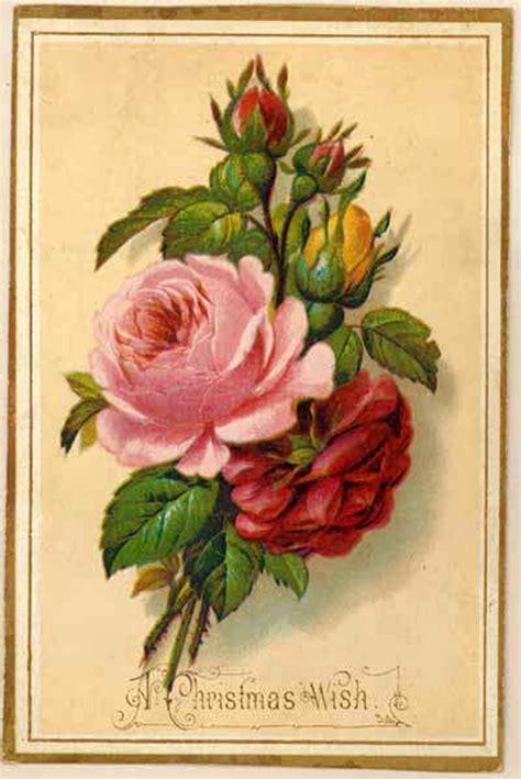 imagenes uñas vintage старинные рисунки открытки цветы 74 работ 187 картины