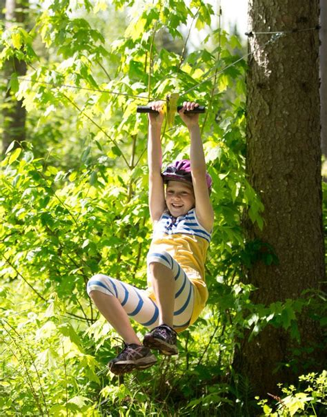 backyard flying fox 1000 images about flying fox on pinterest playgrounds backyards and foxes