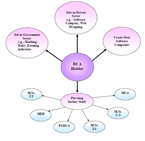 Can I Do Mba Finance After Bca by What To Do After Completion Of Bca Course