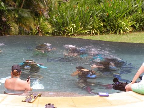 dive nere students in pool with nere picture of rocket frog divers