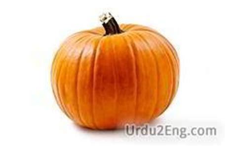 significance of pumpkin in pumpkin urdu meaning