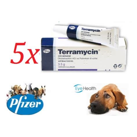 terramycin for dogs terramycin pet eye ointment 3 5gr for cats dogs horses