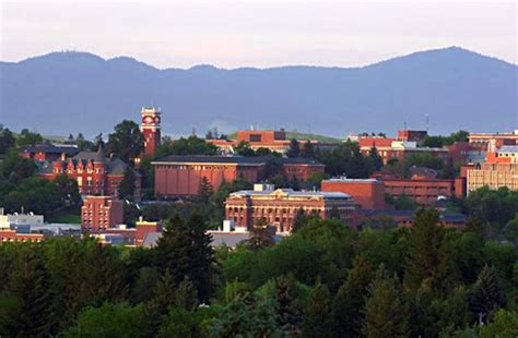 Mba Program Washington State by 2 600 Suspected Cases Of Swine Flu H1n1 Reported At