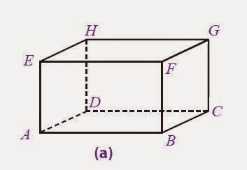 contoh gambar jaring jaring balok terlengkap