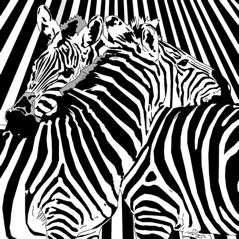 zebra like pattern what are binary options binary zebra pattern looks like