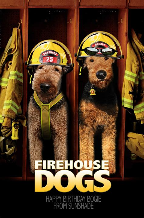 fire house dog movie firehouse dog the sequel to aire is divine