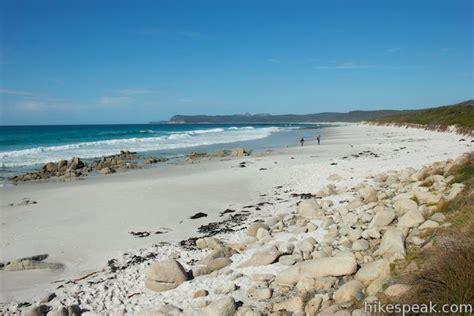 friendly beaches friendly beaches cground tasmania hikespeak