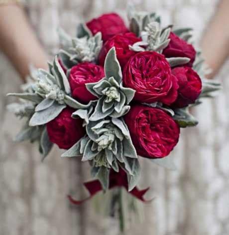 Bridesmaid Dress Material Sles - silver carpet s ear plant carpet vidalondon