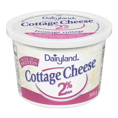 cottage cheese 2 dairyland 2 cottage cheese 500g drugs