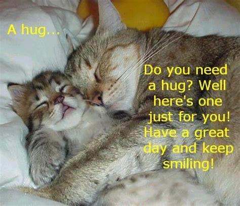cat hugs hugs anyone go smell the coffee