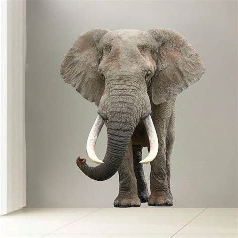 elephant wall mural elephant wall mural 3d realistic elephant wall decal laptop
