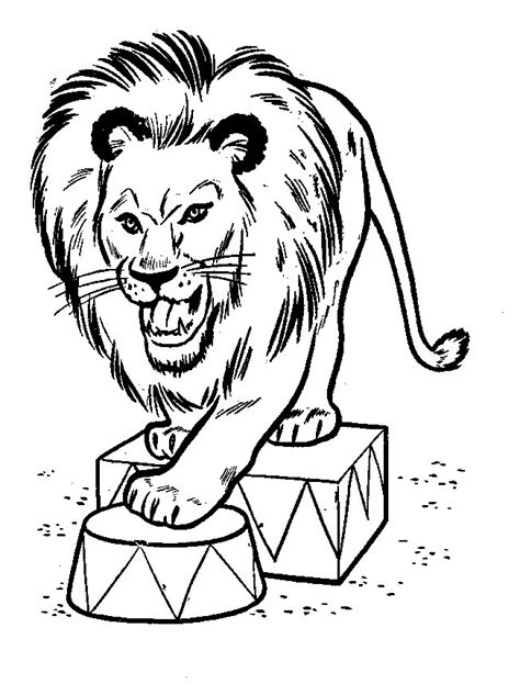 imagenes de leones sin color leones dibujos para colorear dibujos1001 com