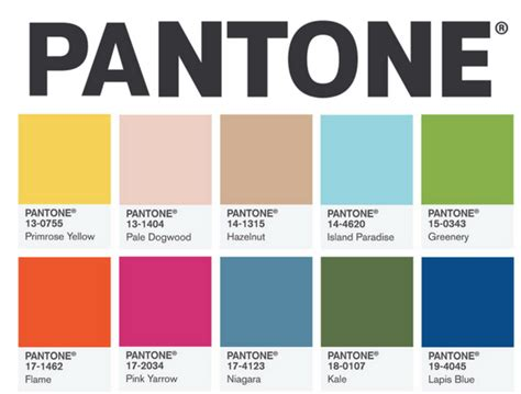 pantone s pantone s top 10 colors for 2017 year january girl