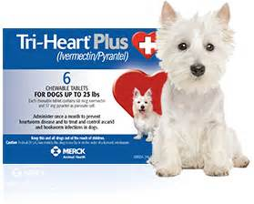Small Dogs For Home Protection Tri 174 Plus Heartworm Protection For Dogs