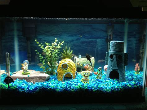 aquarium home decor fish tank decorations a simple guide aquariphiles