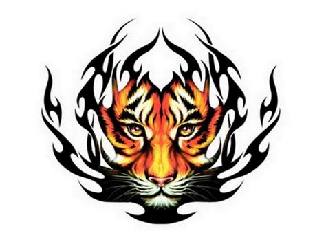 colour tribal tattoos tribal tiger color ink design