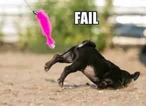 pug fails pugs archives page 2 of 18 pug meme pugs