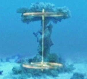 Sho Kuda Blue chariot wheels in the sea hoax persists sea
