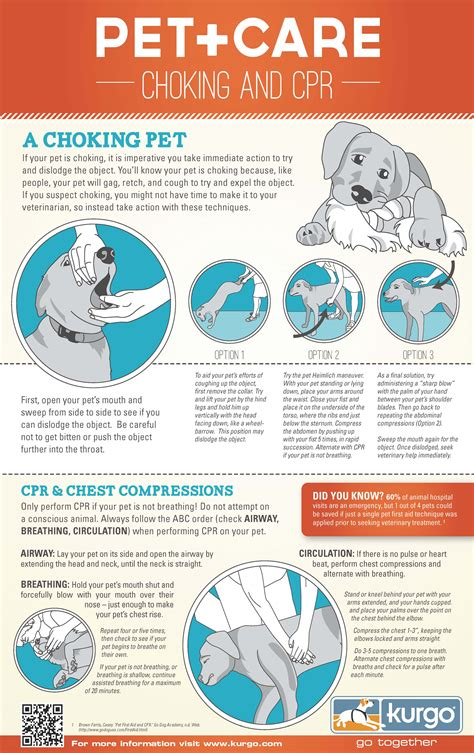 puppy cpr cpr how to
