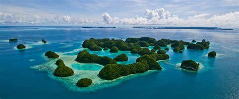 palau dive 6 liveaboards in palau micronesia liveaboard