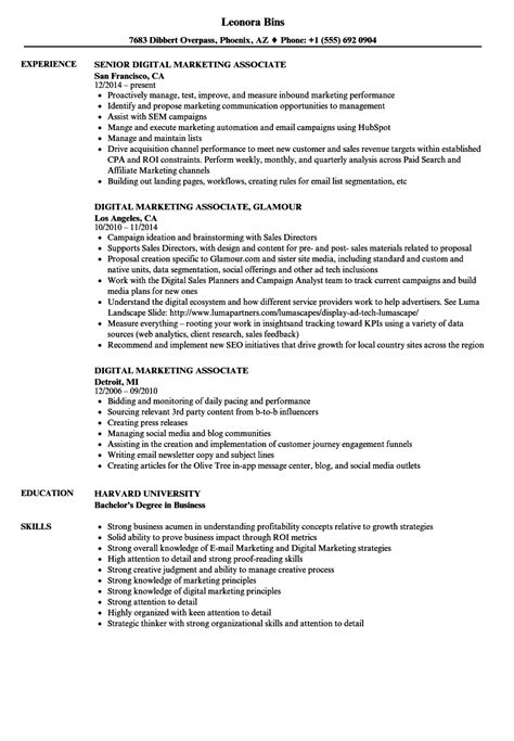 Marketing Associate Resume by Digital Marketing Associate Resume Sles Velvet