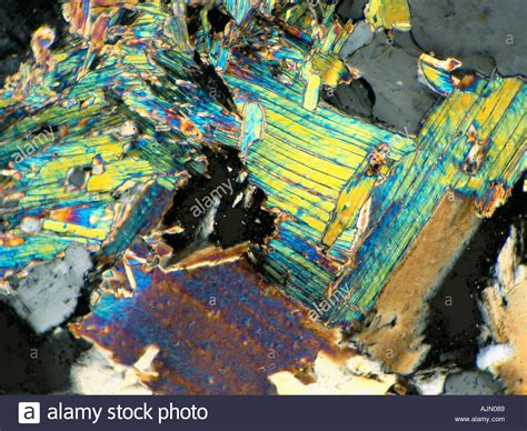 muscovite thin section muscovite section photomicrograph cross polarized lighting