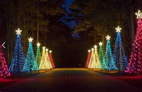guide to fantasy in lights at callaway gardens