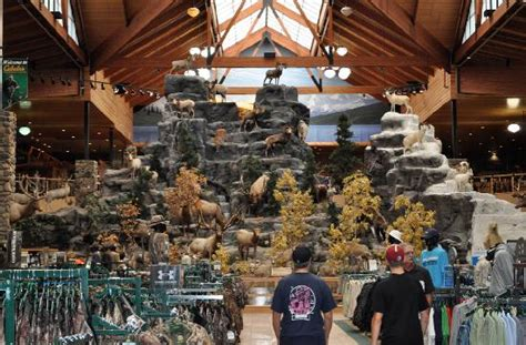 cabela s exterior of cabela s outfitters hamburg pa picture of