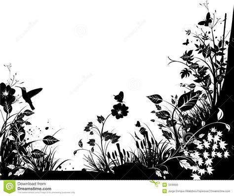fotos de naturaleza en blanco y negro blog de fotograf 237 a vector blanco y negro de la naturaleza fotos de archivo