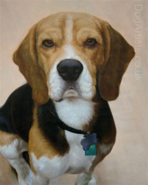 puppies puppies artist beagle dogs need a beagle artist artists