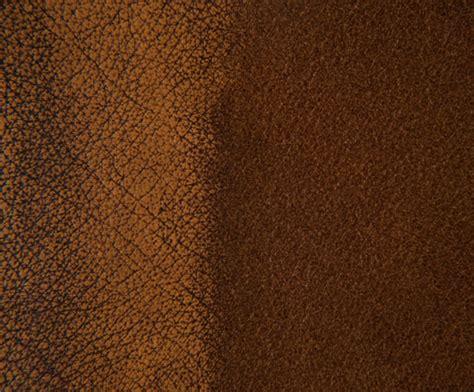 Grain Leather by Birch Antique Corrected Grain Leather Futura