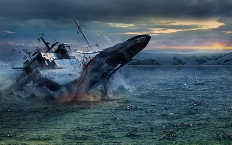 boat size for ocean travel sea ship whales whale ocean shipwreck ship ships boat