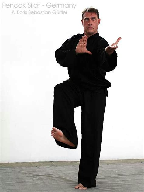 martial arts silat harimau the deadly beauty 11 best best fighting scenes images on pinterest