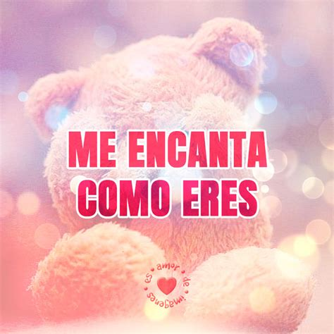 imagenes de love will remember bonita imagen de oso con frase de amor romantic things
