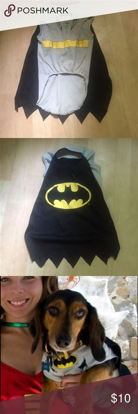batman dog bed the best batman dog costume ideas on pinterest puppies in