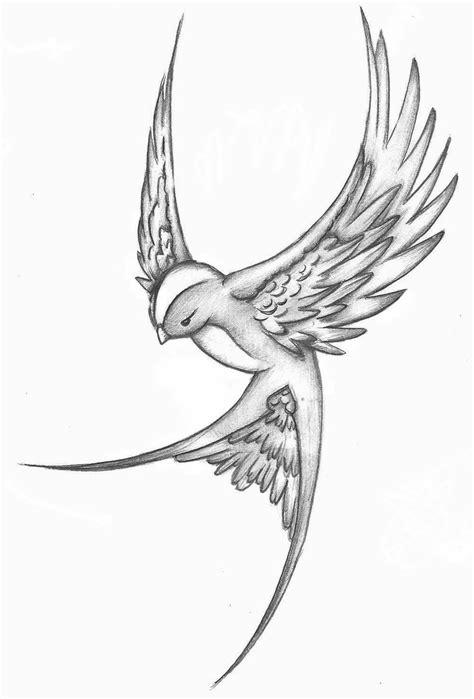 Barn Swallow Tattoo Designs New Bird Sketch By 05na On Deviantart