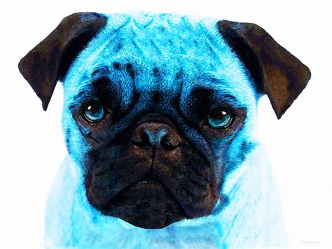 blue pugs blue pug pop by painting by
