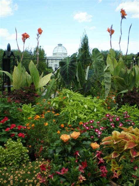 55 best images about norfolk botanical gardens on