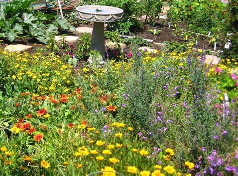 Bee Gardens by Planning For A Wildlife Friendly Garden The Real Dirt