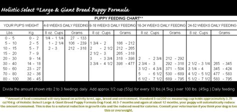 golden retriever feeding schedule ideal puppy feeding schedule photo